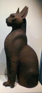 posture cat